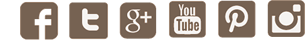 icons_social